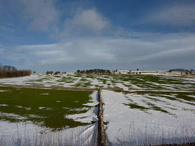 Snow patterns in the green fields