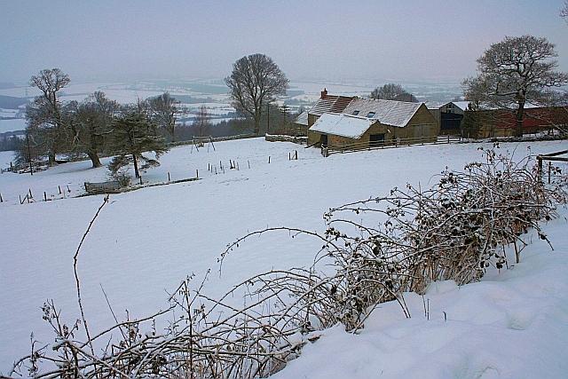 Chapel Wood Farm