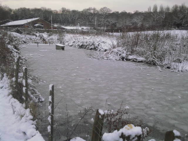 Frozen pond at Woodlands Farm