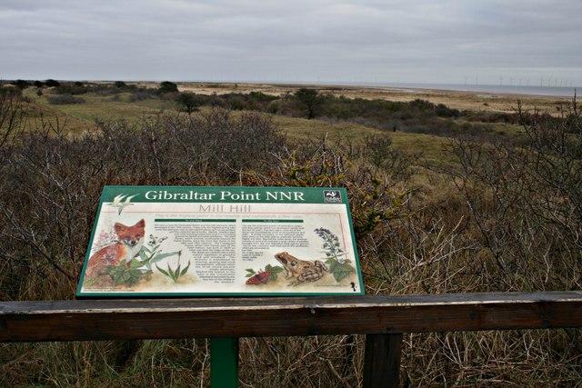 Information board at Mill Hill