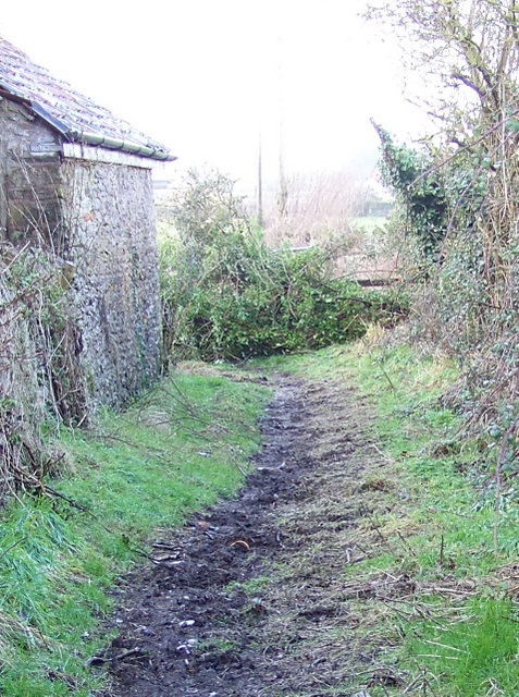 Footpath, Ston Easton