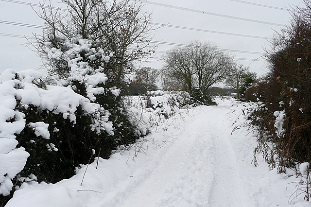 East of Bramley Green