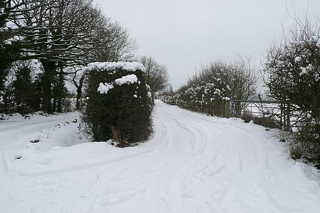 Track to Heywood's Farm