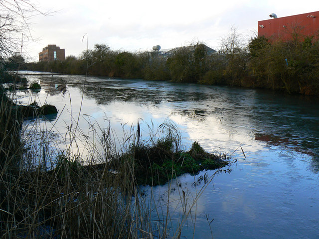Pond, Cheney Manor Trading Estate, Swindon (4)