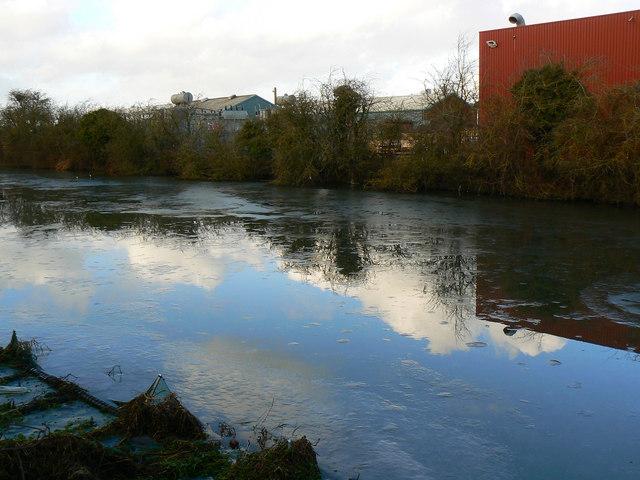 Pond, Cheney Manor Trading Estate, Swindon (7)