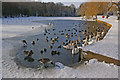 TQ2449 : A frozen Priory Pond by Ian Capper
