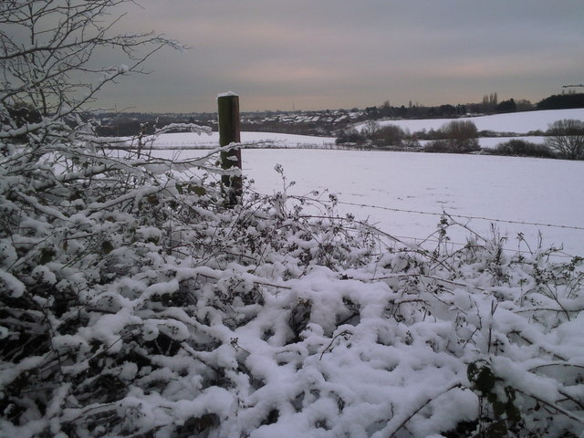 The fields of Woodlands Farm in snow