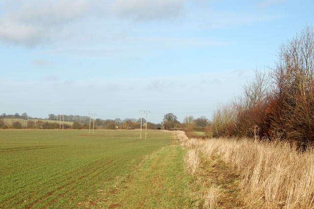 Bridleway north from Newfields Farm