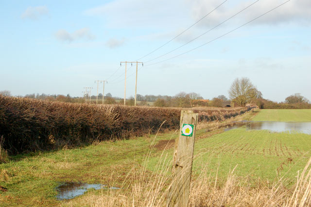 Bridleway sign north of Newfields Farm