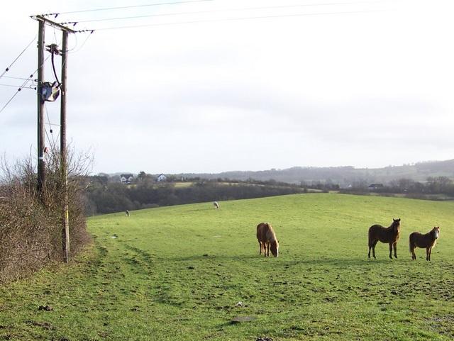 Footpath near Stanton Wick