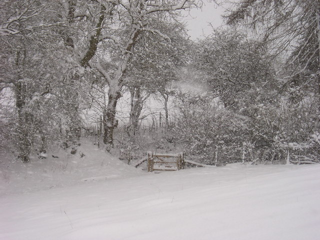 Snow on the old Drover's road