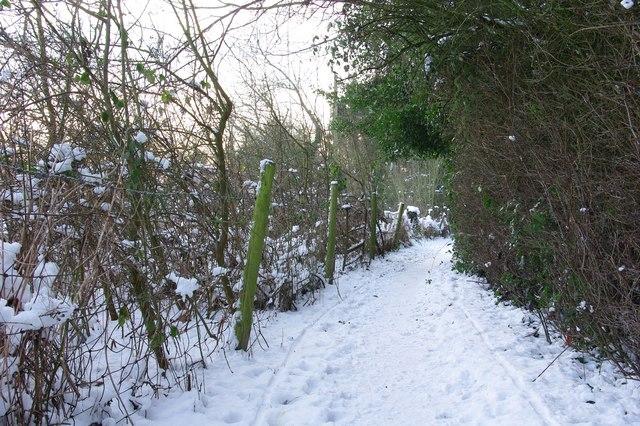 Footpath off Chamberlain Lane