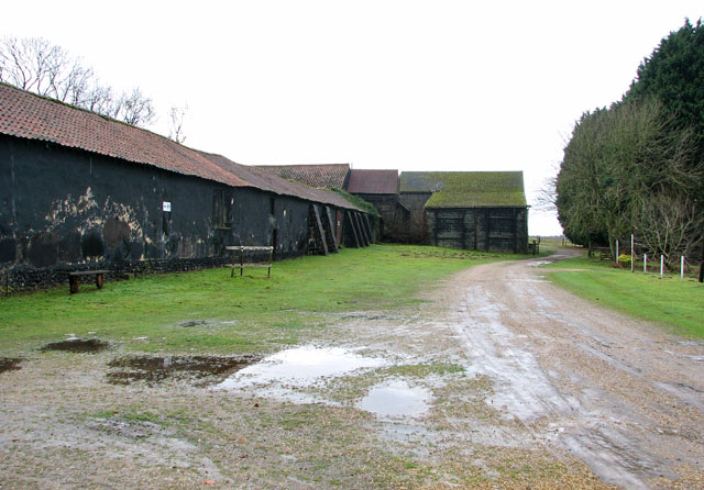 Track past old barns by Ivy Wall Farm