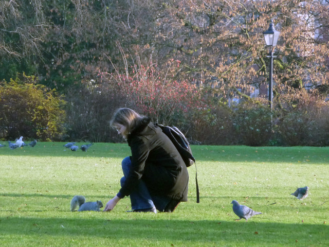 Feeding the squirrels, York Museum Gardens