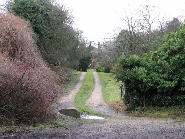 Driveway to Ivy Wall Farm
