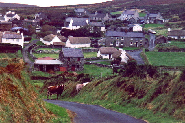 Cregneash - View of village with bulls on the road