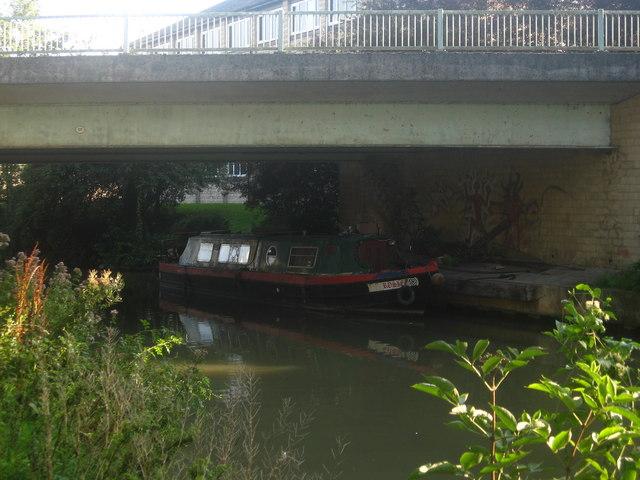 Rosie under the Bridge