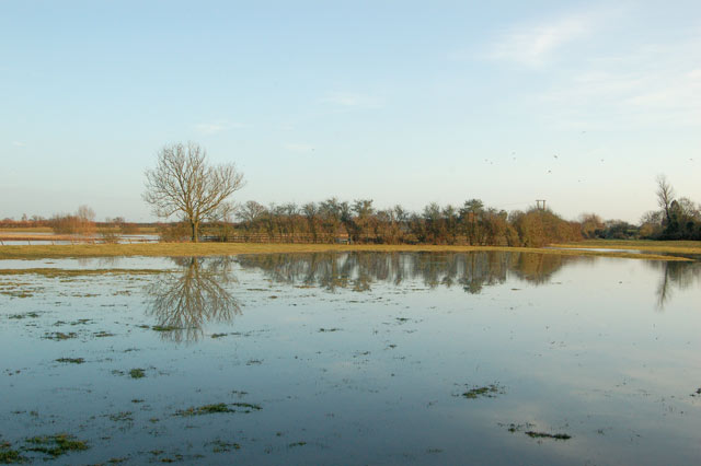 Flooded water meadows beside the River Leam at Kites Hardwick