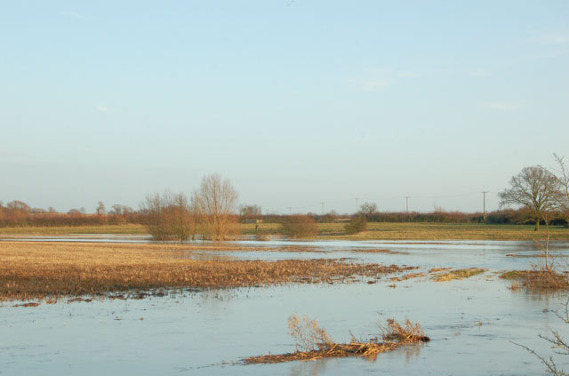 Flooded fields beside the River Leam at Kites Hardwick