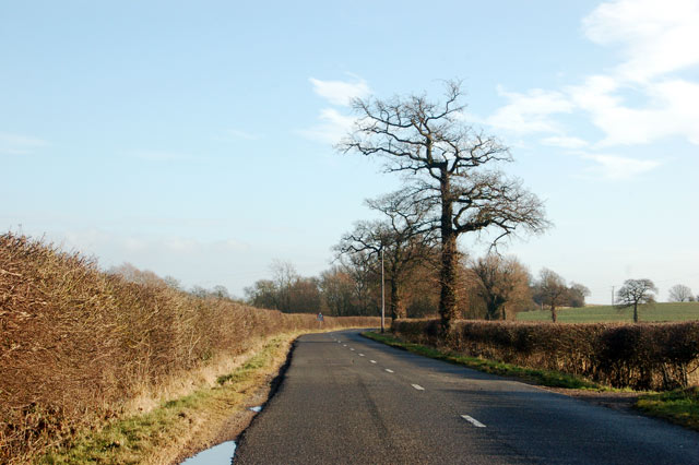 Looking east along the lane to Birdingbury from Marton