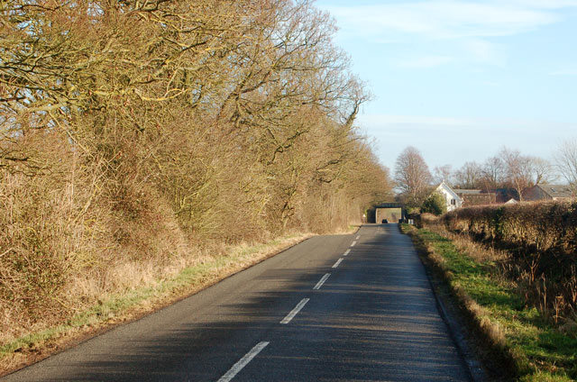 The lane to Birdingbury from Marton in winter sunshine
