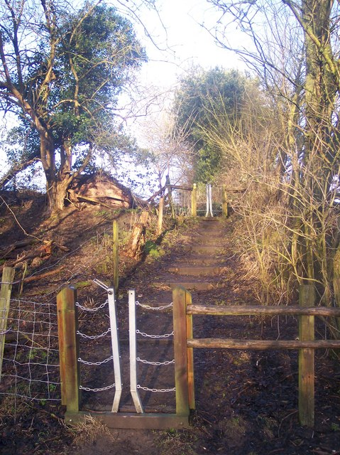 Steps and two chain gates