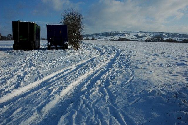 Snow covered farmland, Birlingham