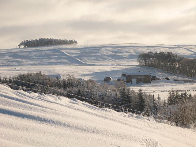 Snowy pastures around Park Gates Farm