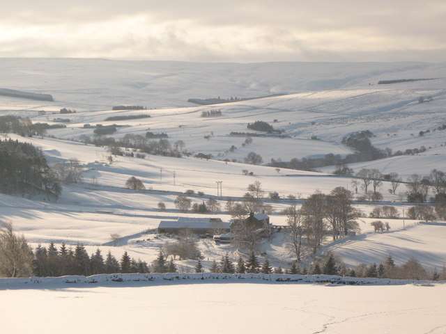 Snowy pastures around Studdon Park
