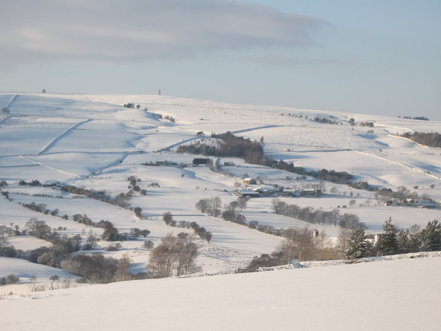 Snowy East Allen Dale near Scotch Halls