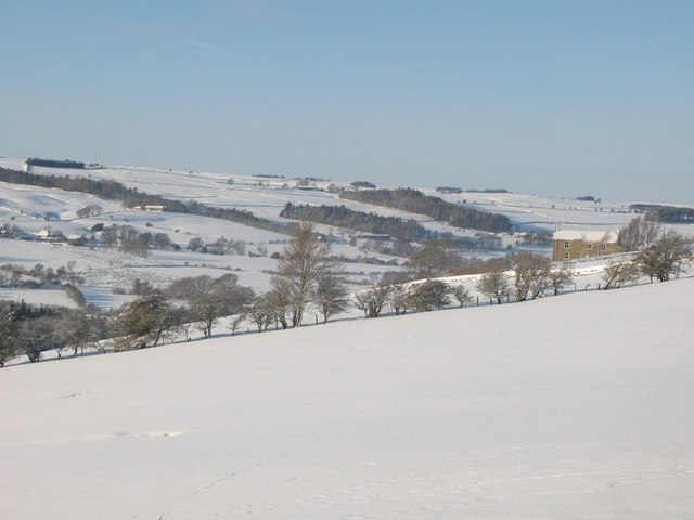 Snowy pastures near Nether Scotch Hall