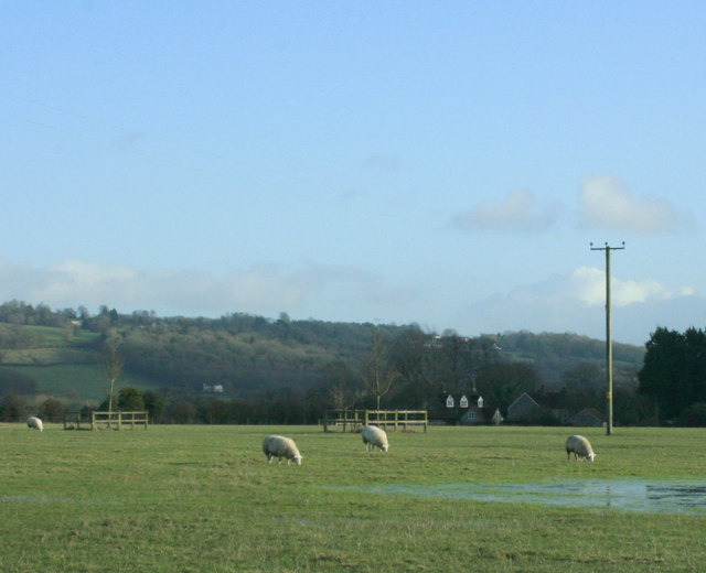 2010 : Sheep in a partly flooded field near Lacock