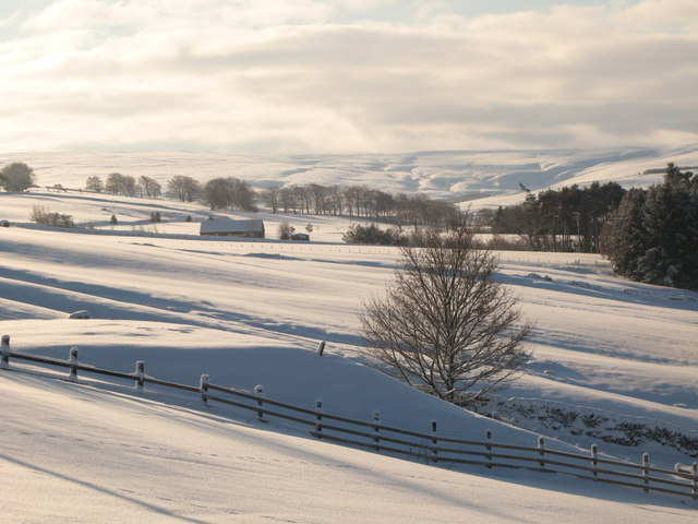 Snowy East Allen Dale north of Sinderhope