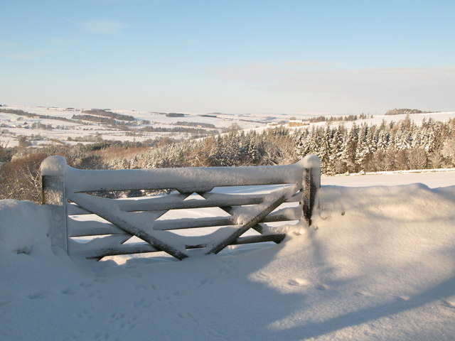 Snowy gate near Park Gates Farm