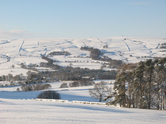 Snowy pastures south of Studdon Park