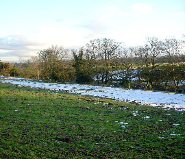 The course of Thorsgill Beck north of Boldron