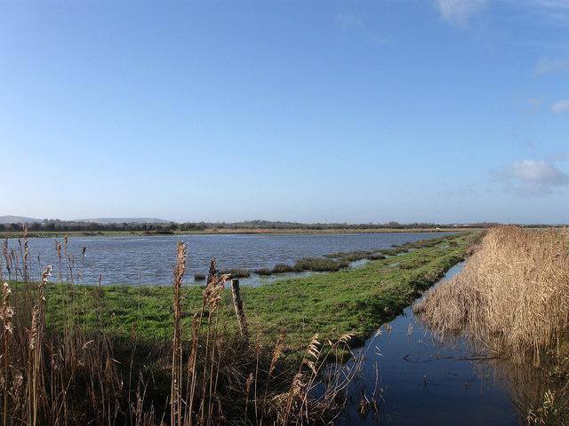 Fourteen Acre Marsh