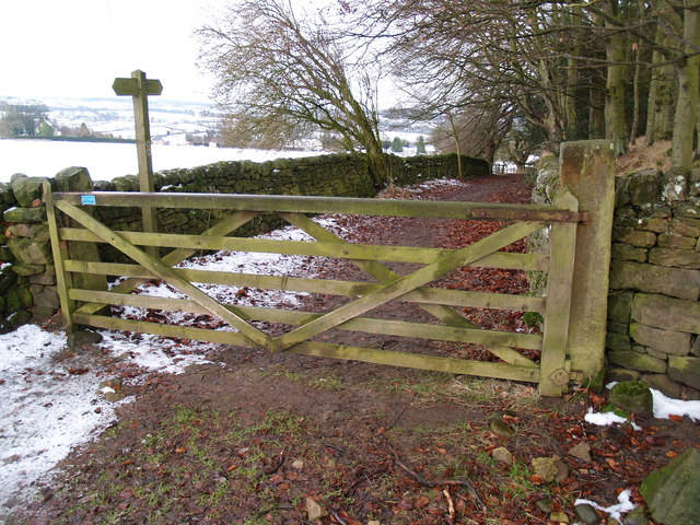 Bridleway Gate on Lane as it descends to High Warden