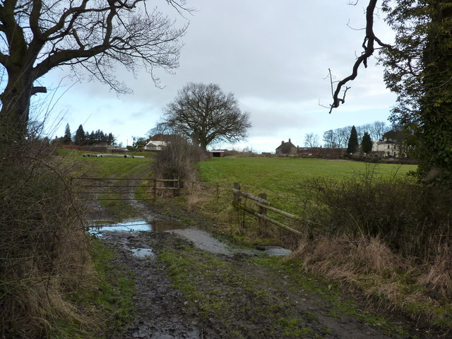 Rivulet through fields, near Walton Wood