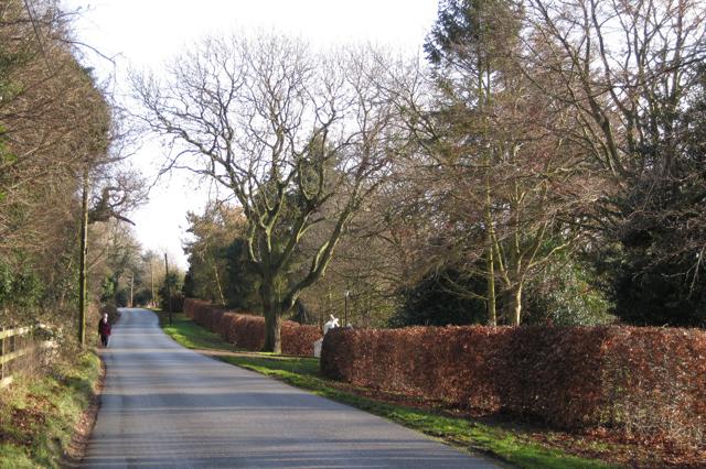 Crew Lane, Kenilworth, looking east
