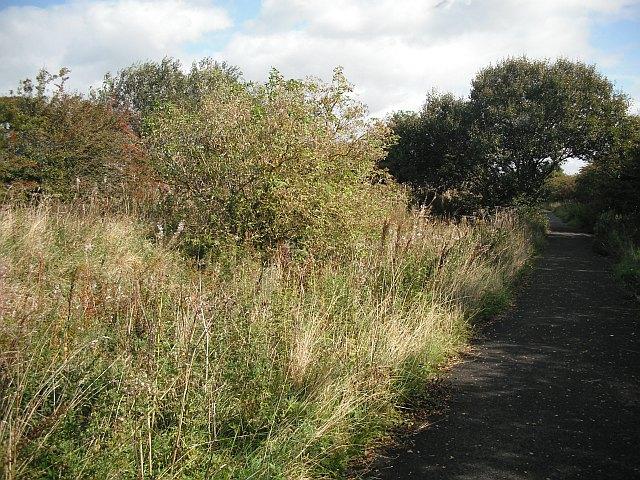 Irvine and Kilmarnock Line