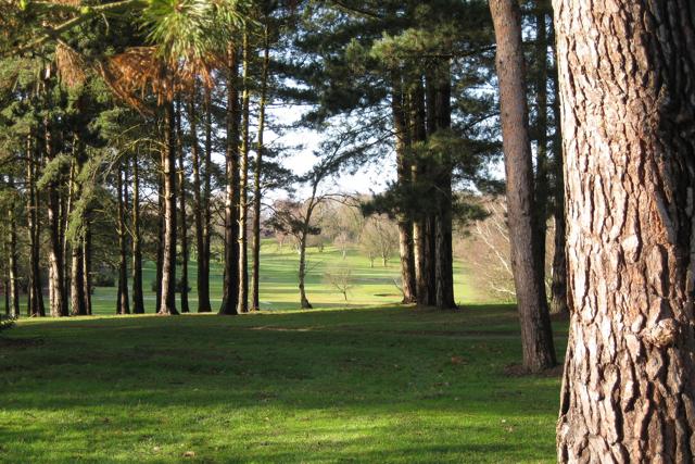 Kenilworth golf course