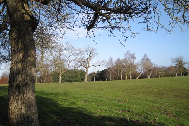Kenilworth golf course (2)