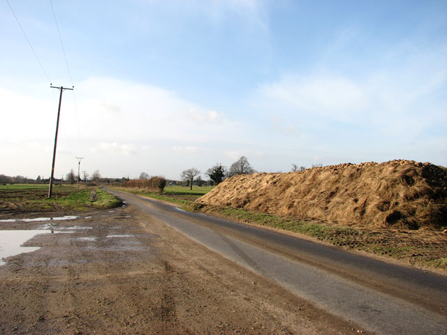 Sugar beet clamp beside the lane to Foulden