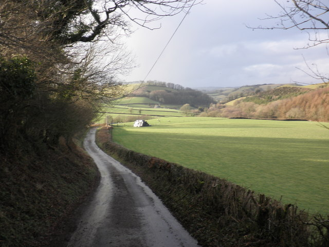 Pasture, at Wick Farm