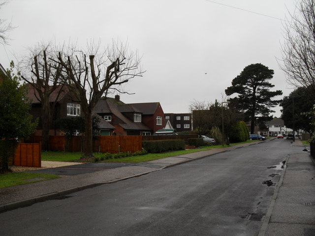 Woodlands Avenue on a dreary January morning
