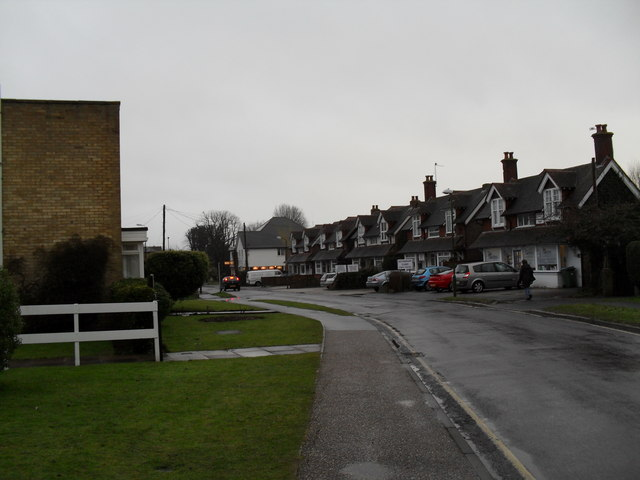 A dull January day in Woodlands Avenue