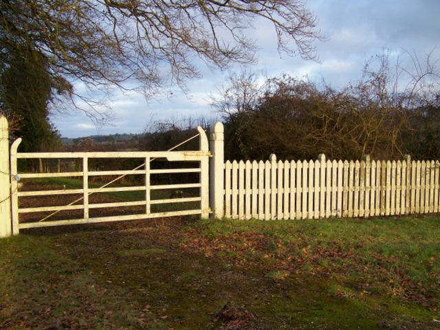 Gate near Winterslow