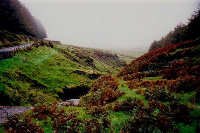 Glen Rushen and Slieau Mooar Plantations off A27