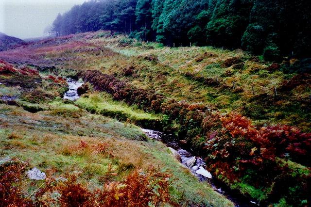 Glen Rushen Stream and Slieau Mooar Plantation
